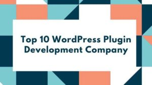 WordPress Plugin Development Company