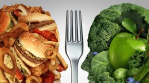 Plant-Based Protein Vs. Animal-Based Protein