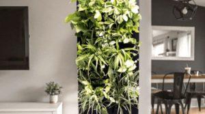 Best Indoor Air Purifier