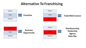 Alternative to Franchising